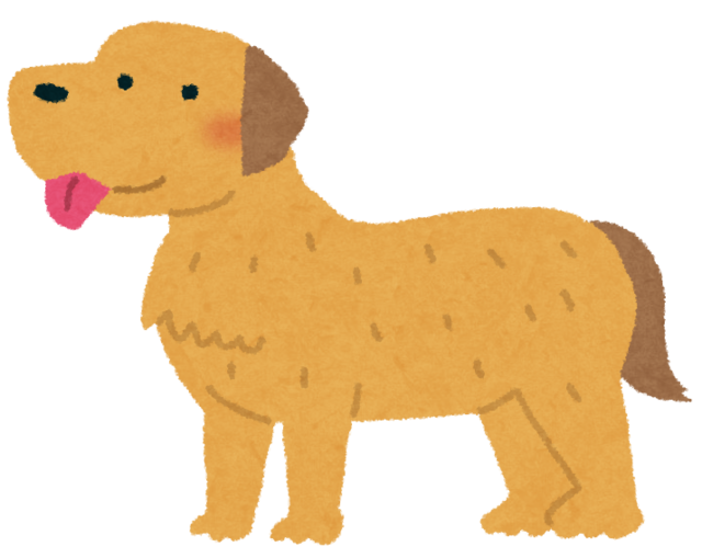 dog_golden_retriever.png